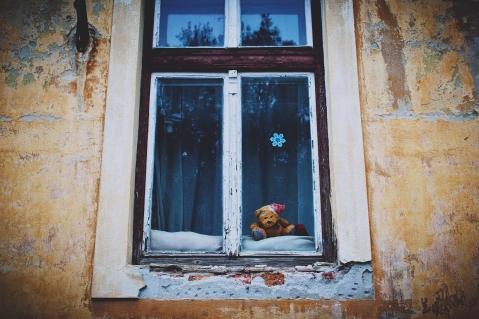 teddy_bear_window