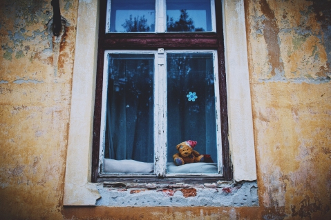 teddy_bear_window