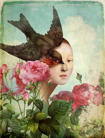 The Silent Garden by Christian Schloe