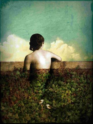 The View by Catrin Welz-Stein via Red Bubble