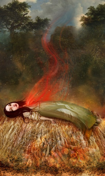 my funeral pyre by meluseena